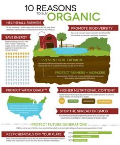 Purely Natural Cosmetics 10 Reasons to buy organic