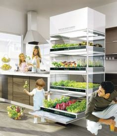Hydroponics for Nano Garden - Grow what you eat and eat what your grow. That is the future!