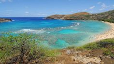 Snorkeling In Honolulu - 12 Best Places : TripHobo