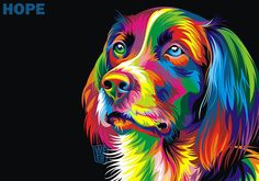 Colorful Dog by Weer