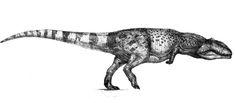 Giganotosaurus by Monopteryx on DeviantArt Jurassic Park, Jurassic World Dinosaurs, Prehistoric Wildlife, Prehistoric Creatures, Creature Feature, Creature Design, Realistic Animal Drawings, Extinct Animals, Dinosaur Art