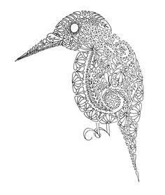 Bird Doodle - Doodle is Art