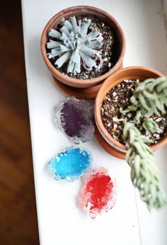 How to grow your own crystals - What Fun!