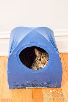 Cats love to sit on your laundry, well now they can sit inside it! DIY cat tent via Practically Functional. #diycattentlove