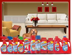 Carpet and Upholstery Cleaners products-i-love
