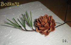 Šišky a ihličie borovice 14 Pine Cones, Flowers, Cakes, Fairy, Pasta, Products, Step By Step, Tutorials, Food Cakes