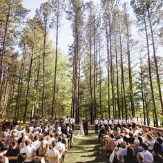 Reception held at a wooded field overlooking a pasture and lake. Photo: Marc Climie.