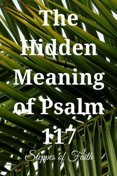 Though Psalm 117 is the shortest chapter in the Bible, it's packed with hidden meaning that dates all the way back to Adam and Eve. Learn what makes this chapter so special to both God and us. Prayer Scriptures, Bible Teachings, Bible Verses Quotes, Bible Study Lessons, Bible Study Notebook, Psalms, Bible Proverbs, Bible Knowledge, Faith In God