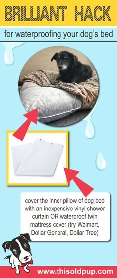 Urinary incontinence is a common ailment among old #dogs. Check out this DIY waterproof dog bed hack. Simple, quick and inexpensive!