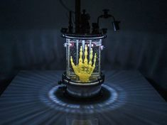 Regenerative Reliquary - Amy Karle