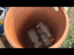 Soil-Saving Trick for Deep Pots. Do Mother Earth a solid and save some soil, plastic bottles, and money all at once.