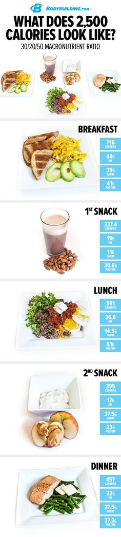 What Does 2,500 Calories Look Like?