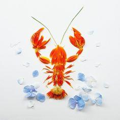Criatividade com flores, de Limzy