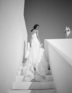 Maticevski Bridal Unconditional Gown | tonimaticevski.com