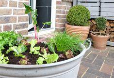 Die Gartensaison startet und eine meiner liebsten Aufgaben dabei ist es, unsere Gemüsetonne neu anzulegen, denn dann weiß ich – jetzt ist der Frühling wirklich da. Wir haben zwar einen Garten…