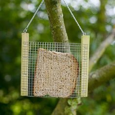 """DIY Bird Feeder. Could also put yarn scraps in it for nest-building birds to add to their nests. Could make this with some twine/string and some plastic embroidery sheets. The kids can then weave yarn scraps through for an instant """"birds nest builder."""""""