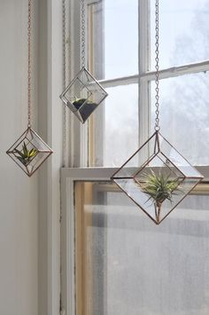 Air Plant Terrarium Kit And Stained Glass Inspiration