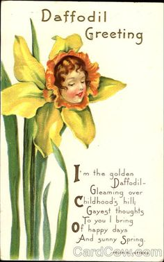 Daffodil Greeting Series 424 C I'm the golden Daffodil Gleaming over Childhood's hill; Gayest thoughts To you I bring Of happy days And Sunny Spring