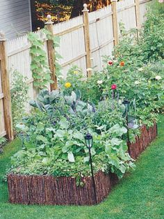 How to Maximize Small Garden Spaces Small Space Gardening, Garden Spaces, Small Gardens, Gardening Tips, Outdoor Gardens, Lawn And Garden, Garden Art, Home And Garden, Small City Garden