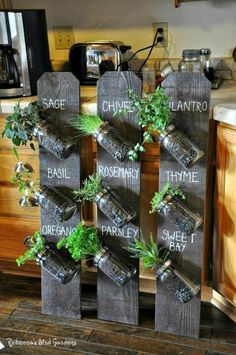 Mason Jar Herb Garden Ideas Grow fresh herbs in your kitchen with this easy Mason Jar Herb Garden. Check out the Recycled Bottle Herb Garden and the Indoor Herb Cheat Sheet too!Grow fresh herbs in your kitchen with this easy Mason Jar Herb Garden.