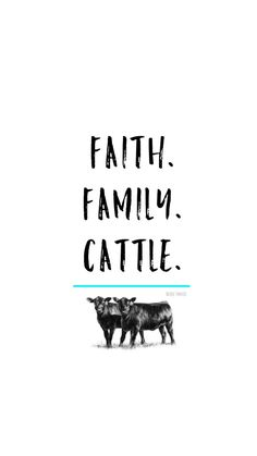 Silver Barn Cattle is here for your show steer & heifer needs! Have questions about how to clip a calf? How to fit & groom show cattle? Cow Quotes, Farm Quotes, Country Girl Quotes, Country Life, Horse Quotes, Family Quotes, Country Living, Cow Wallpaper, Wallpaper Ideas
