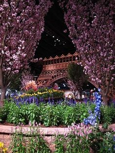 Paris - Philadelphia Flower Show