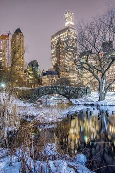 Gapstow Bridge Central Park New York City