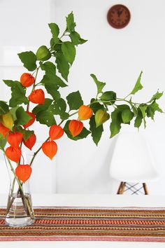 Bambula I so want to grow these but they fail for me. Orange Flowers, Fresh Flowers, White Flowers, Beautiful Flowers, Autumn Scenery, Autumn Theme, Chinese Blossom, Chinese Lanterns Plant, Flower Decorations