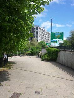 Wolverhampton University Degree Certificate, West Midlands, Wolves, Sidewalk, England, Life, Wolf, Side Walkway