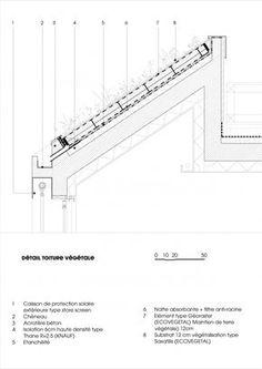 Toit terrasse coupe de principe construction traditionnelle tanch it sur dalle b ton - Coupe toiture vegetalisee ...