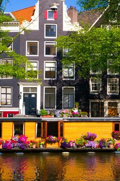 Floating House with Flowers, Amsterdam, Netherlands