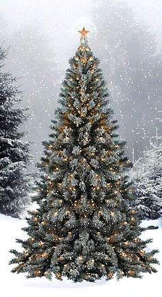 .Buon Natale, merry christmas, joyeux noel, feliz navidad, frohe weihnachten, god jul, nollaig shona, feliz natal, क्रिसमस, gleðileg jól, hyvää joulua, kαλά xριστούγεννα, 聖誕節快樂, glædelig jul, メリークリスマス.