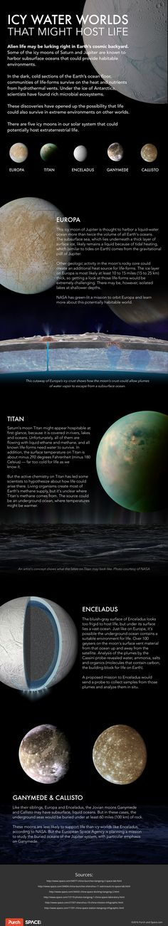 Our Solar System Alien life may be lurking right in Earth's cosmic backyard. Some of the icy moons of Saturn and Jupiter are known to harbor subsurface oceans that could provide habitable environments. Physics Facts, Science Facts, Life Science, Teaching Science, Astronomy Facts, Space And Astronomy, Sistema Solar, Earth Science, Science And Nature