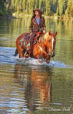 All People from the World are Welcome in Our Community lovely ✿ Horses 💙🌐👑🐎✿💕 Cowgirl And Horse, Sexy Cowgirl, Cowboy Art, Cowgirl Style, Cow Girl, Horse Girl, Western Riding, Western Art, Westerns