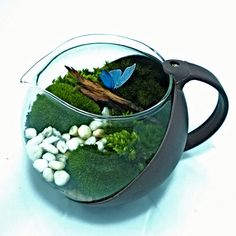 Tea pot terrarium by tiny world สวนในกาชา http://www.tinyworld2013.com