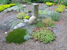 Gartengestaltung mit Kies und Steinen wetterfest pflanzen