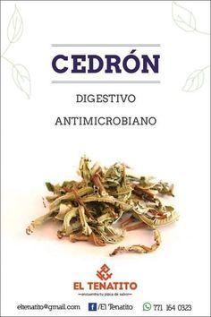 Plantas medicinales - Cedrón