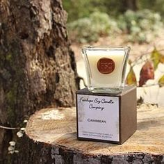 Fairhope Soy Candle in Caribbean