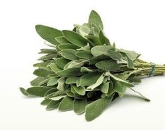 Sage Herb, Medicinal Herbs, Green Leaves, Food Styling, Diy Fashion, Green And Grey, Natural Remedies, Spinach, Health Tips