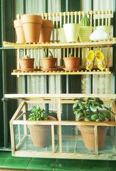 ikea dish rack turned into a plant shelf.