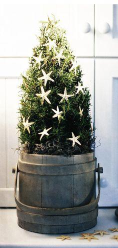 Charming for Christmas time Nautical Christmas, Mini Christmas Tree, Beach Christmas, Merry Little Christmas, Country Christmas, Winter Christmas, Christmas Things, Merry Xmas, Xmas Tree