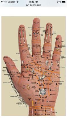 Hand Reflexology Chart for using doTERRA oils Health And Beauty, Health And Wellness, Health Fitness, Health Tips, Health Benefits, Health Care, Workout Fitness, Health Trends, Healthy Beauty