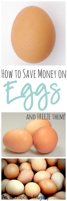 How to Save Money on Eggs: Simple ways to save money on eggs, and great tips on how to freeze, preserve or dehydrate eggs. Did you know you can keep eggs for up to 9 months or more with some of these methods?  An Exercise In Frugality