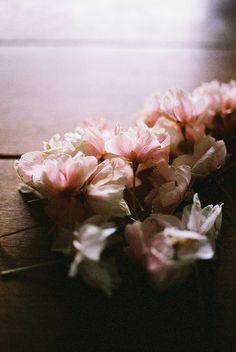 ~Spring Pirouettes~