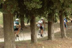 L'Eroica: a good old-fashioned bike ride Old Fashioned Bike, Brooks England, New Bicycle, Classic Bikes, Road Bikes, Vintage Bicycles, Event Photos, Good Old, Beautiful Images