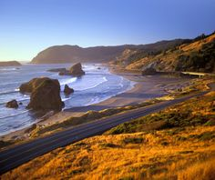 The state owns the entire coast of Oregon and has preserved unobstructed natural vistas along 300 or so miles of beaches off Highway 101. Between Port Orford  and Brookings, fierce sea cliffs stand in contrast to the pastoral farmland and roaming cattle of Oregon's small towns.