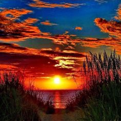 Beautiful beach sunset by Susan Brandt