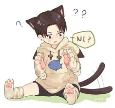 Levi Kitty