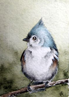 From the Studio of Madelaine: On the Lighter Side - Bird #58