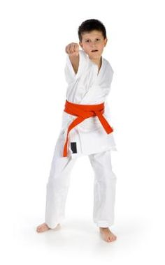 Karate reduces ADHD symptoms